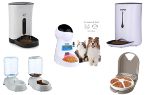 How to Choose The Best Automatic Feeder For Multiple Cats