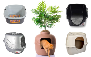 Choosing the Best Cat Litter Boxes for Small Spaces/Multiple Cats