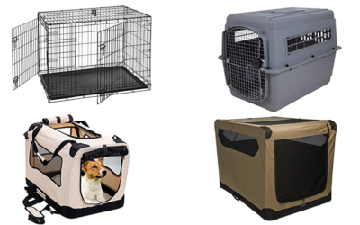 How To Find The Best Dog Crate For Car T …