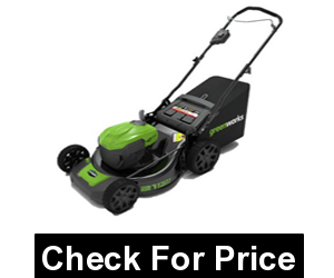 "GreenWorks MO40L02 G-MAX 40V 21"" Self-Propelled Dual Port Mower, Battery and Charger Not Included"