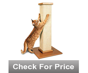 Pioneer Pet SmartCat The Ultimate Scratching Post,Color: beige,Made with fibrous, durable sisal,32 inches high
