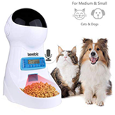 automatic feeders for cats with a timer