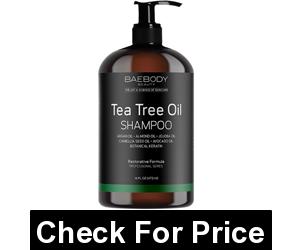 Baebody Tea Tree Oil Shampoo for Dandruff, Dry Hair & Itchy Scalp, Price: $17.95, 16 Ounces Shampoo