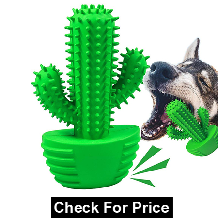 Pamlulu - Chewable toy for dog teeth cleaning