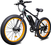 ECOTRIC Electric Fat Tire Bike