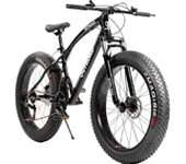 Max4out Fat Tire Bike