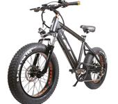 NAKTO 20 inch Fat Tire Bike